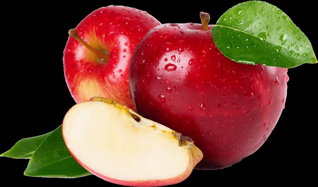 export-fruit-tunisie